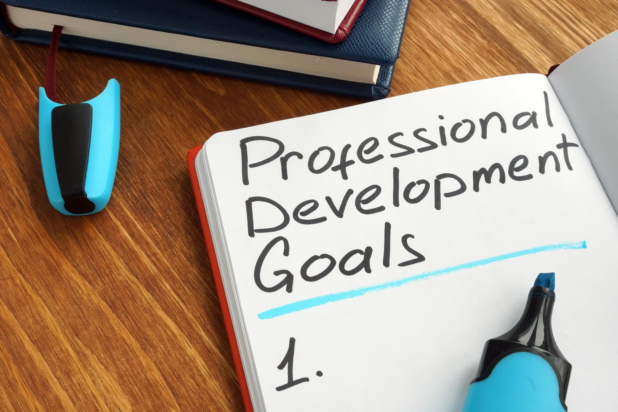 Professional Development, Part 1